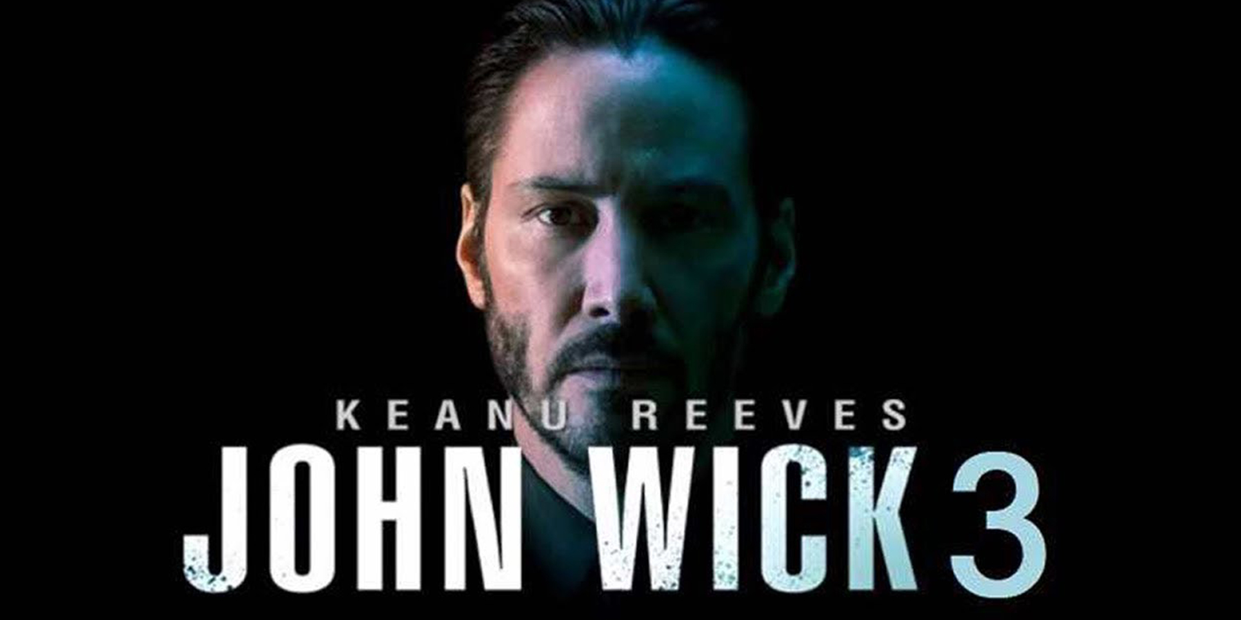 John Wick 3 Movie Poster Long